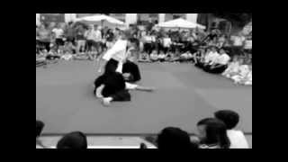 preview picture of video 'Exhibición Aikido Jaén'