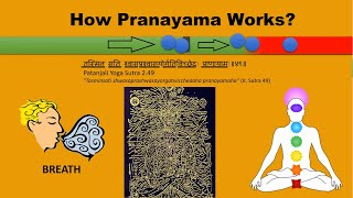 What is Pranayama | How it works | Benefits & Types of Pranayama - Download this Video in MP3, M4A, WEBM, MP4, 3GP