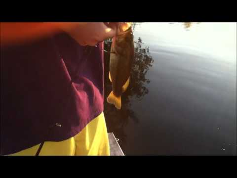 RCF: Pond Fishing Ep.3: Mini Crankbaits