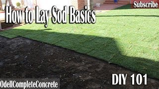 How to lay Sod 101 DIY