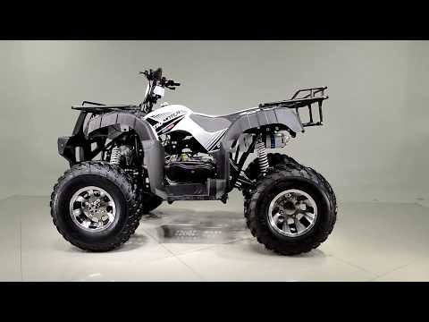 2019 Tao Motor Bull200 in Dearborn Heights, Michigan - Video 1