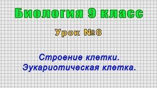 Биология 9 класс Урок 8