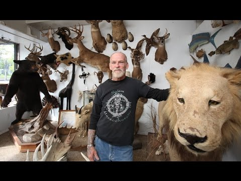 The Last Taxidermist In New York