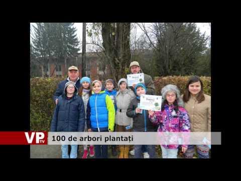 100 de arbori plantați