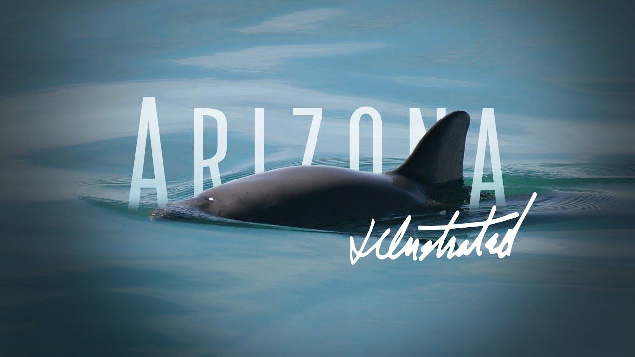 Arizona Illustrated Episode 640