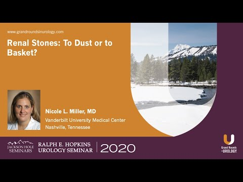 Renal Stones: To Dust or to Basket?