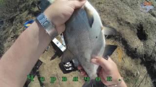 Рыбалка на разливе кудьмы около ветчака