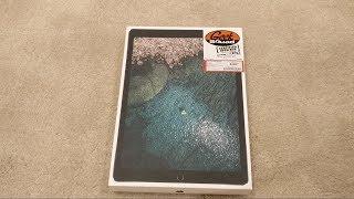 What does a Best Buy Certified Open Box iPad Pro Look Like?