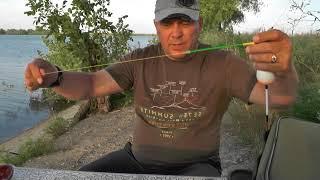 Рыбалка в самарской области пекилянка