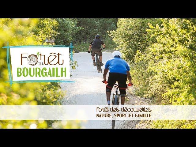 Forêt du Bourgailh