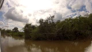 preview picture of video 'River safari to Lamanai Ruins, Belize'