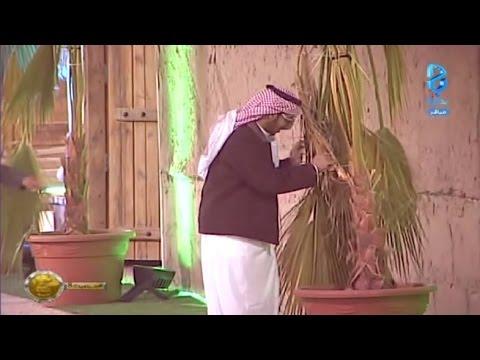 Download جنون عبدالله الجميري من أبو كاتم | #زد_رصيدك8 HD Video