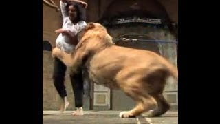 Shocking: Lion Attacks on Indian Womana