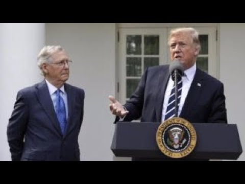 Trump, McConnell pledge unity on Republican agenda