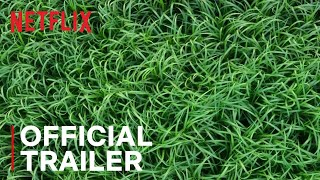 Trailer of In the Tall Grass (2019)