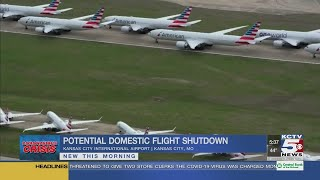 US Domestic Air Travel Sees Virtual Shutdown As More Restrictions Are Being Discussed