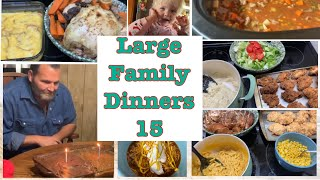 Large Family Dinners 15