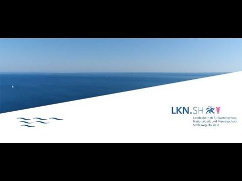 LKN.SH feiert sein 10-jähriges Bestehen