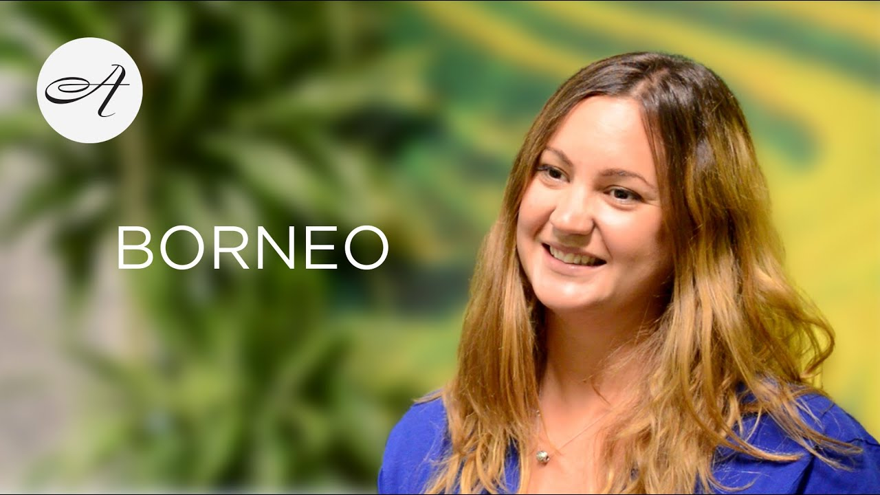 Introducing Borneo