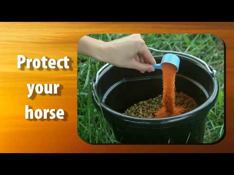 Summer Games Electrolyte for Horses (40 lb) Video