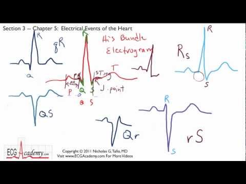 ECG Interpretation, Electrical Events Of The Heart, Part 3-5