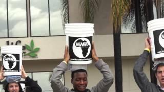 Water Walk - Full Recap