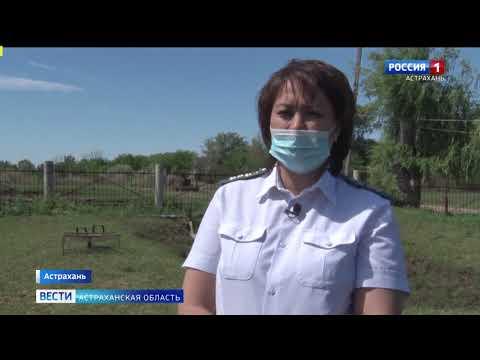 Управлением Россельхознадзора проведен мониторинг содержания рыб в прудовом хозяйстве Астраханской области