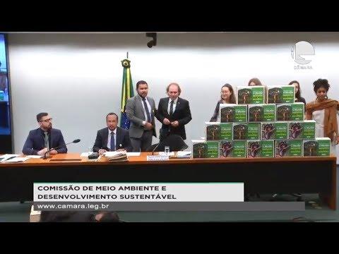 Meio Ambiente e Desenvolvimento Sustentável - Votação de propostas - 21/08/19