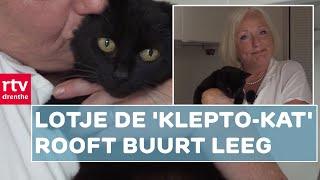 Lotje steelt lingerie van de buren | RTV Drenthe