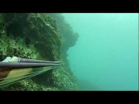 Video su ricerche nel russo che pesca 3.99