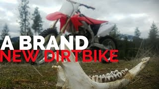 2008 Honda CRF 450R Motorcycle Specs, Reviews, Prices