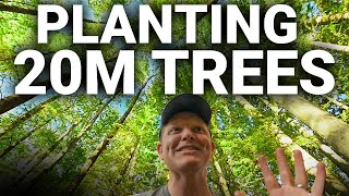 How to Plant 20 MILLION TREES - Smarter Every Day 227 #TeamTrees by Smarter Every Day
