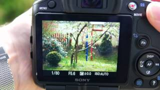 Sony A65-Informationen