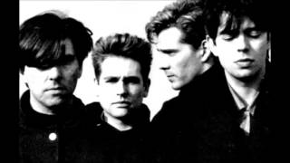 Echo & The Bunnymen... Rust