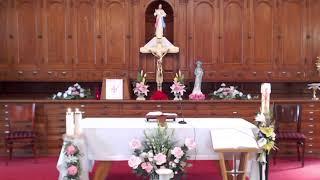 29.05.2020 7:50 Kinh sáng Thần Vụ, 8:20 Thánh Lễ