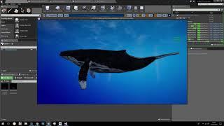 Whale physics simulation