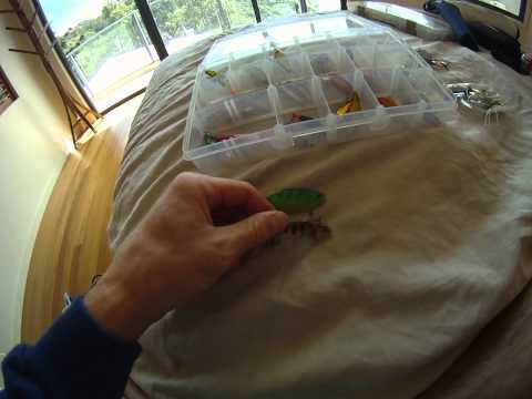 Tommy's Tackle Box – Freshwater Lure Fishing – Which lures to use?