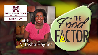 The Food Factor: Get Active