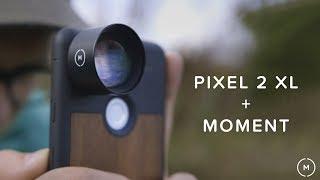Google Pixel 2 Camera + Moment Lenses | Comparison Vlog