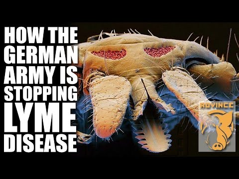 How the German Army is stopping Lyme Disease