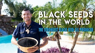 Black seeds in the World