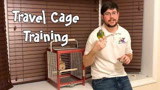 Training Parrot to Go in Travel Cage