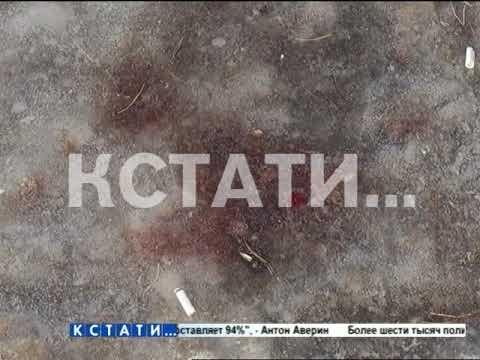 Смертельные разборки в Володарском районе
