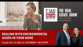 Dealing With Environmental Issues In Your Home?