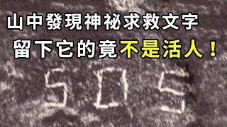 【未解決事件】北海道SOS遭難事件之謎|PowPow