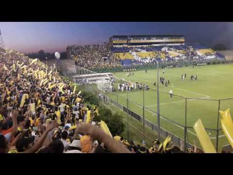 """""""LA RAZA AURINEGRA - Dale Campeóooon Dale Campeón [HD]"""" Barra: La Raza Aurinegra • Club: Guaraní de Asunción"""