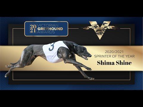 2021 Victorian Sprinter of the Year: Shima Shine
