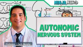 Neurology | Autonomic Nervous System