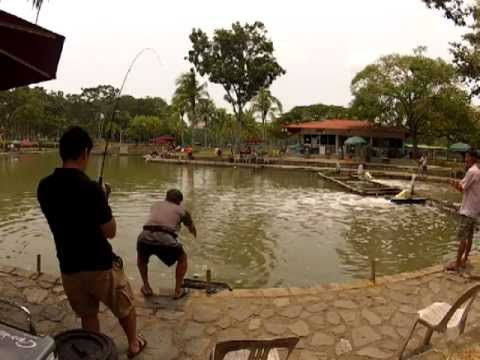 20120923 Pasir Ris Pond Fishing 4