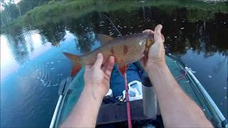 Карелия река сяпся рыбалка